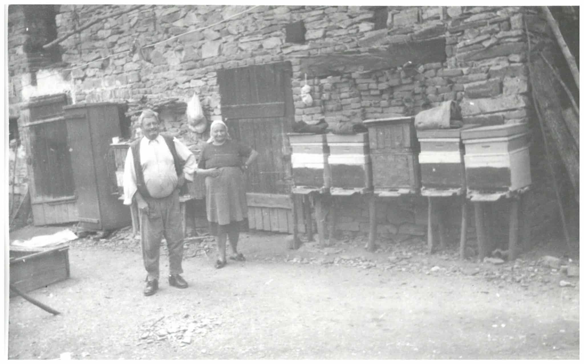 43489 Stupina actuala comuna Parau judetul Brasov scaled